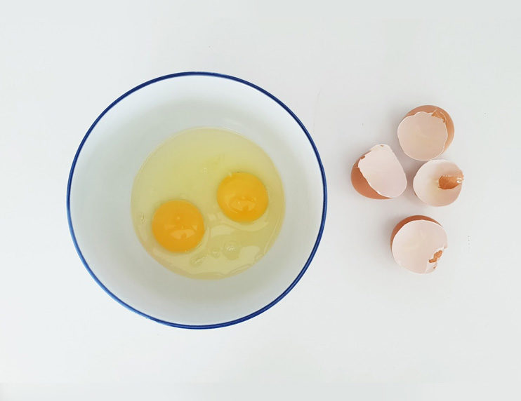 Feeding your ferrets eggs: Two perspectives - Ferret World