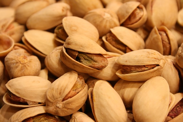 Which Nuts Are Safe For Parrots? List of Edible Nuts