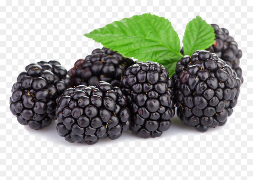 Blackberries Png, Transparent Png - vhv