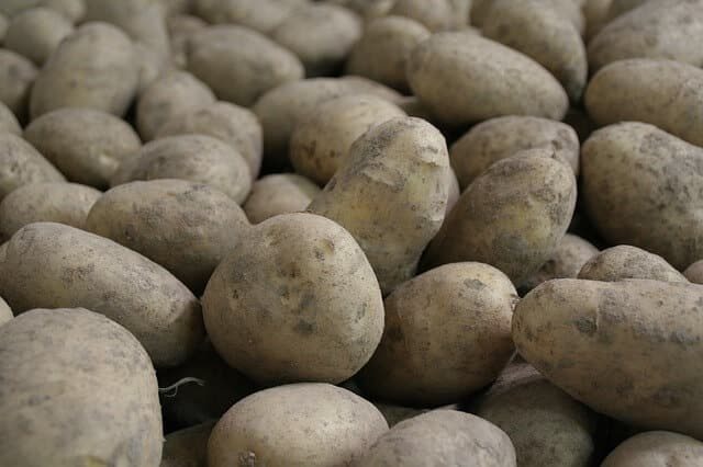 Can Rabbits Eat Potatoes - Rabbit Cages UK