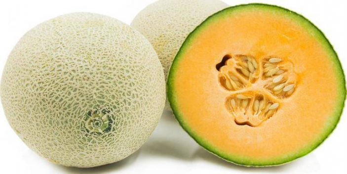 Now That They Love Them, Can Cats Eat Cantaloupe? | Pet Care Advisors