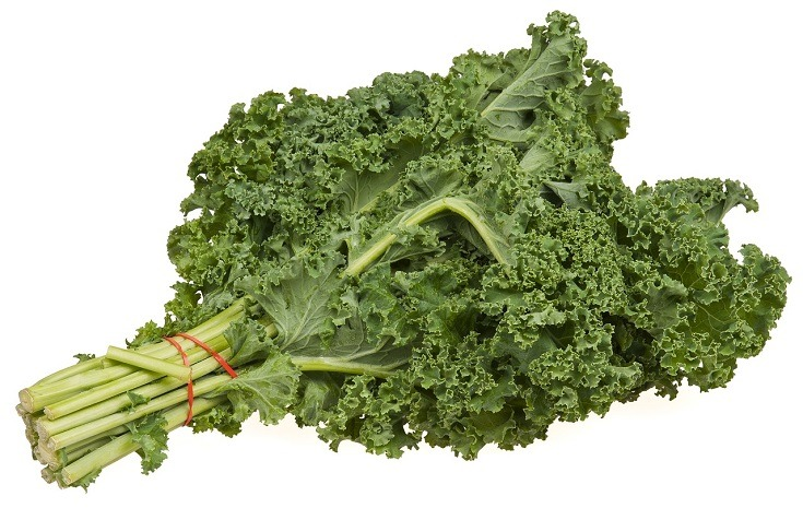 Can Guinea Pigs Eat Kale? What You Need to Know! | Pet Keen