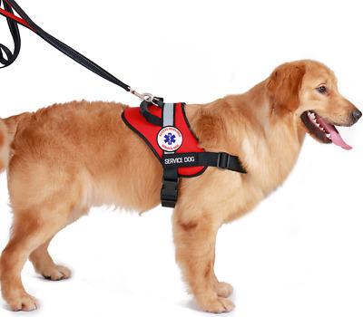 CUSTOM SERVICE/ THERAPY Dog vest