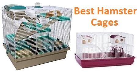 Top 15 Best Hamster Cages in 2020