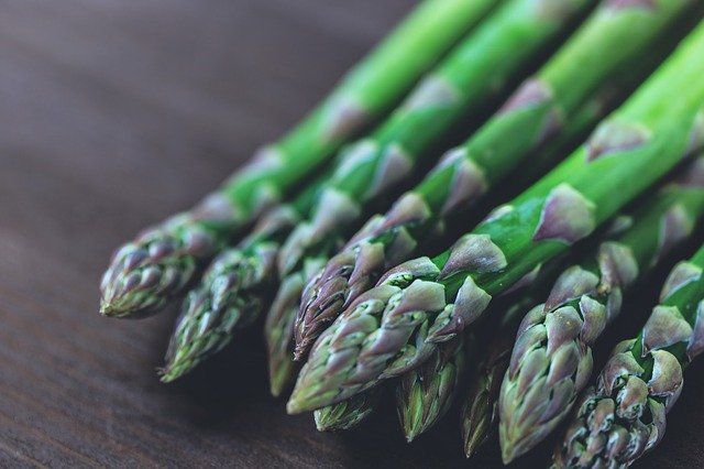 Can Dogs Eat Asparagus? Serving Suggestions and What to Watch For