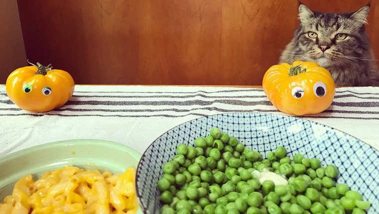 Can Cats Eat Peas? Are Peas Safe For Cats? - CatTime