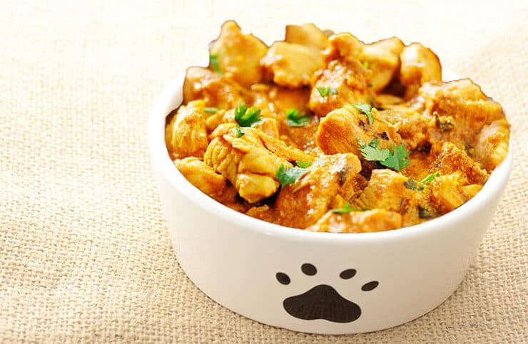 Can Dogs Eat Curry? How Curry Ingredients Affect Dogs