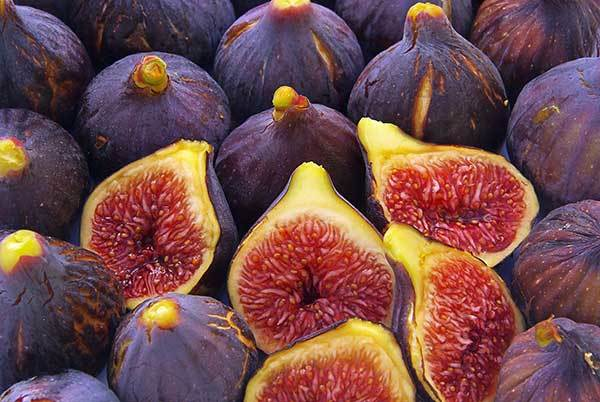 Can Dogs Eat Figs? Is This Fruit Good for Your Pup?