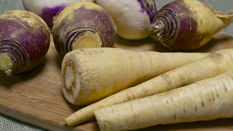 Can Dogs Eat Parsnips And Turnips?