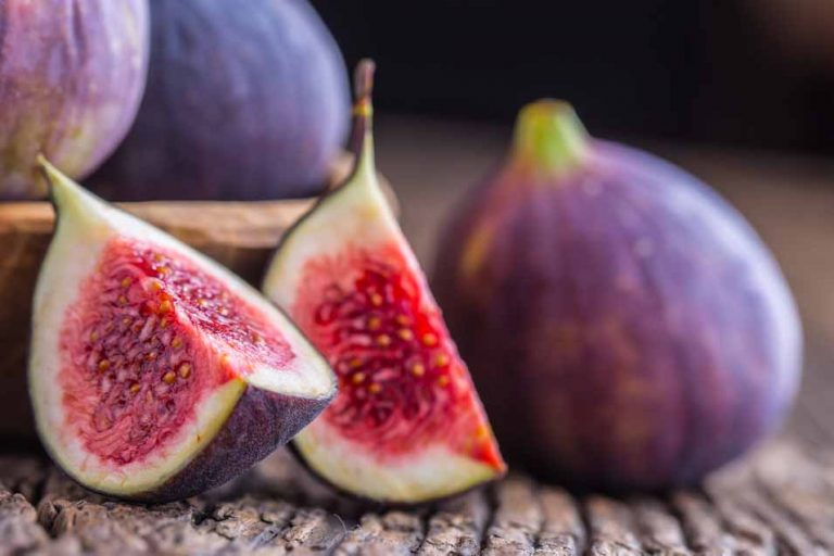 Can Dogs Eat Figs | Pet Friendly House