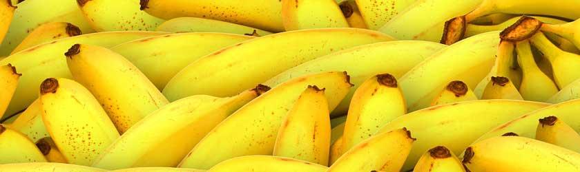 Can Rats Eat Bananas? - Furry Facts