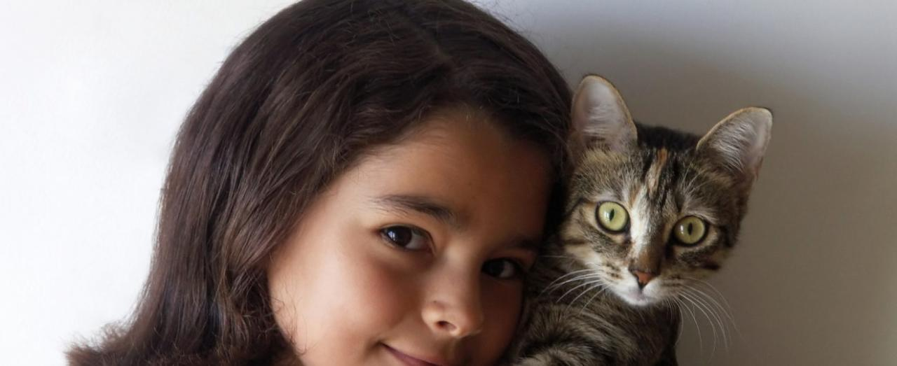 Why does my cat eat my hair? - KittyExpert.com