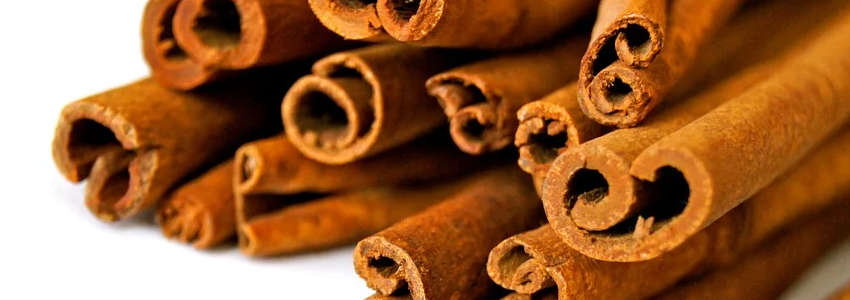 Can Cats Eat Cinnamon Safely?