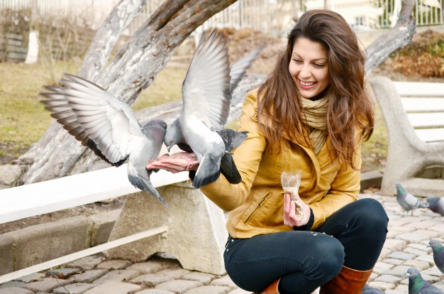 https://www.freepik.com/free-photo/happy-young-woman-feeding-pigeons_940514.htm#page=1&query=pigeon%20eating&position=1
