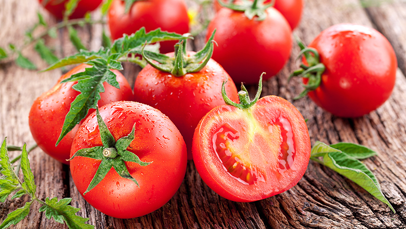 How to grow tasty Tomatoes | Yates