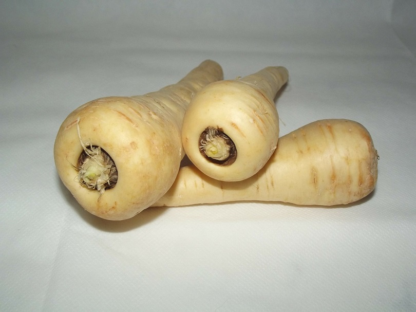 Can Dogs Eat Parsnips? What You Need To Know! | Doggie Designer