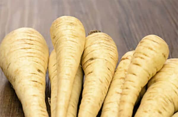 Can Dogs Eat Parsnips? - Dog Advice Center