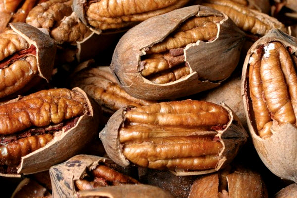 Georgia Pecans: What's Going on With the Market? – AgFax
