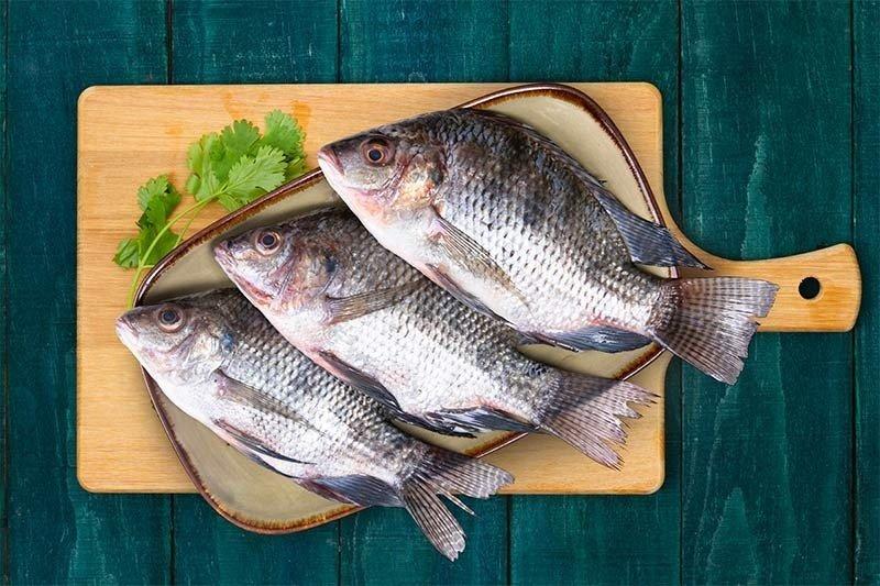 Tilapia / بلطي / Jalebi Fish (Large) : Buy online | freshtohome.com
