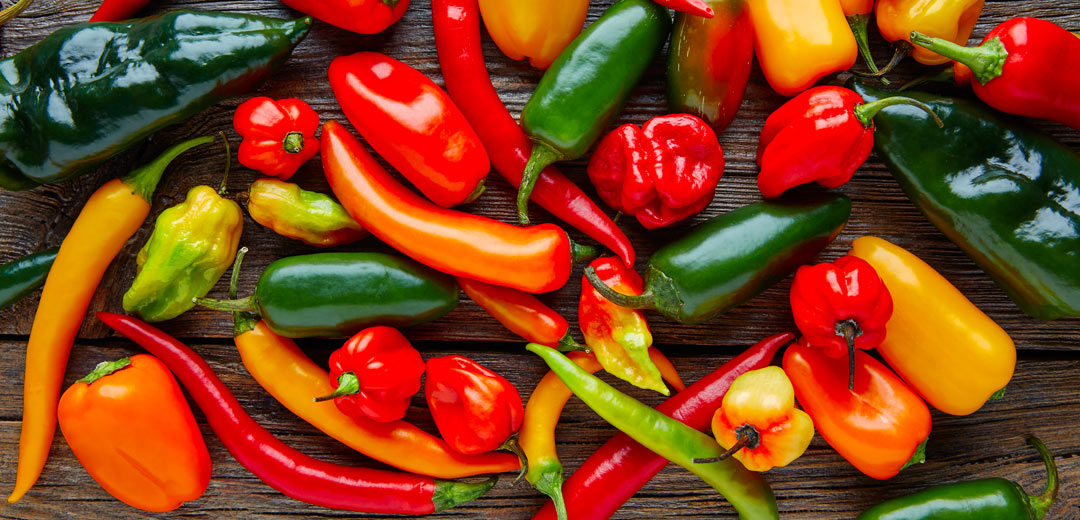 The Complete Pepper Guide | TLC Garden Centers