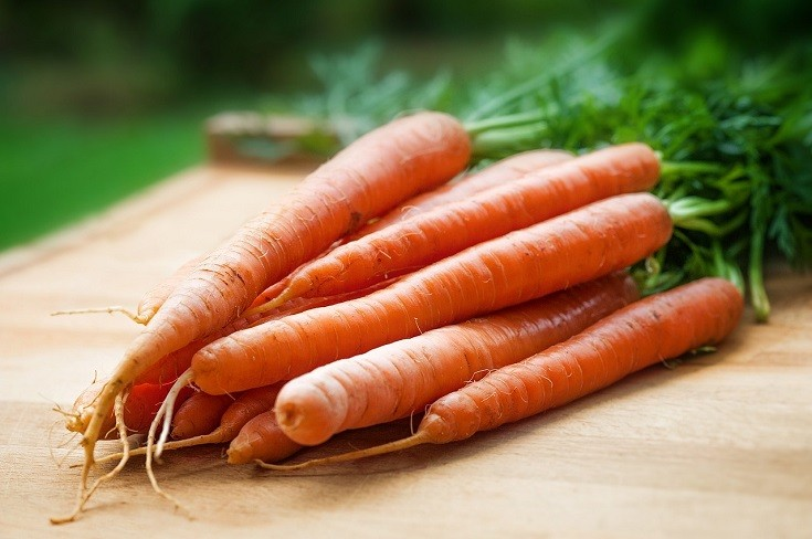 Can Guinea Pigs Eat Carrots? What You Need to Know!   Pet Keen