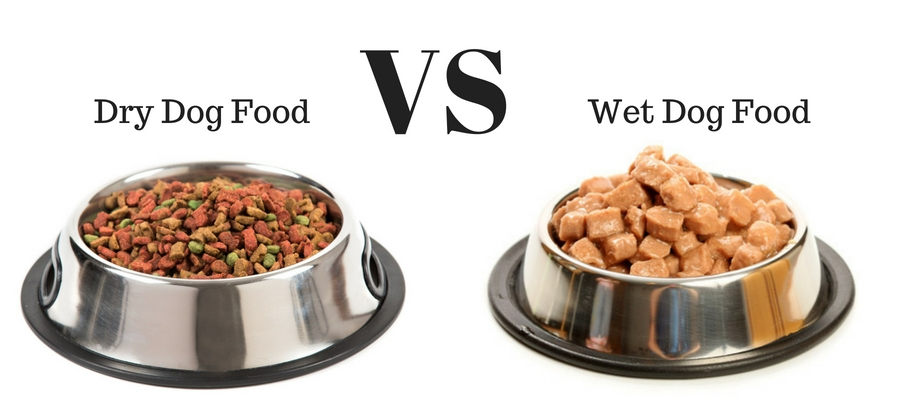 Wet Food vs. Dry Dog Food: Which is Best For Your Pet? - Paw Castle