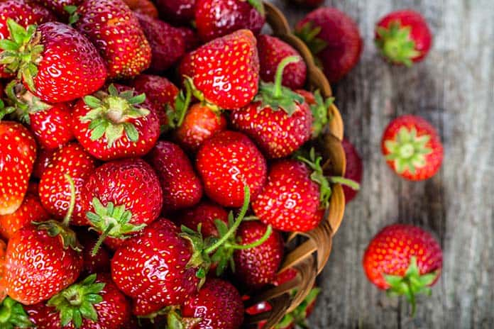 Pick-Your-Own Strawberries in Greater Richmond and Beyond - Richmond Mom