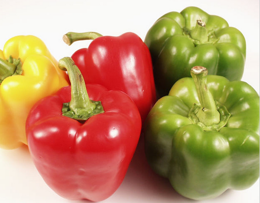 Can Dogs Eat Bell Peppers: Green, Red or Yellow?
