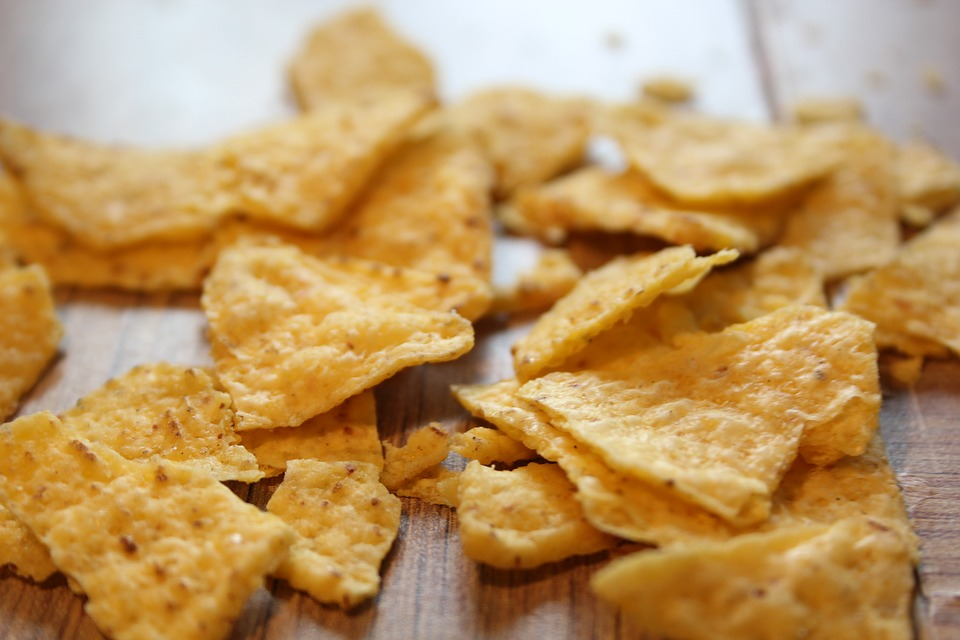Can My Dog Eat Chips? How Junk Food Can Harm Your Dog   Chips and Salt Poisoning