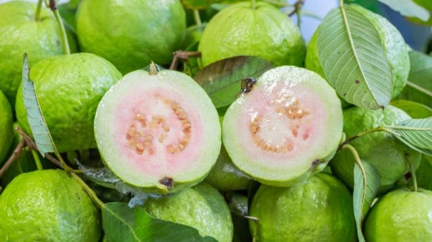 15 Amazing Guava Benefits: Heart Healthy, Weight Loss Friendly and More - NDTV Food