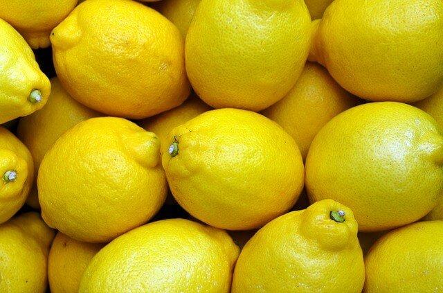 Can rabbits eat lemons? | apetbunny