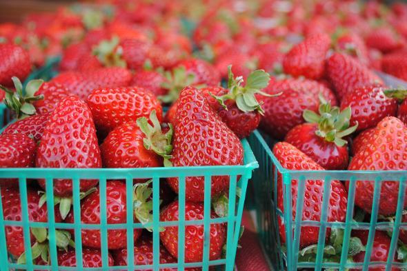 Strawberries | CUESA