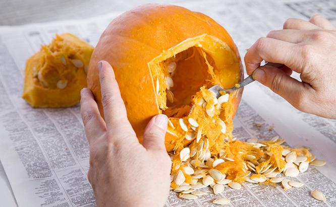 Roast Pumpkin Seeds for Your Bird Feeders