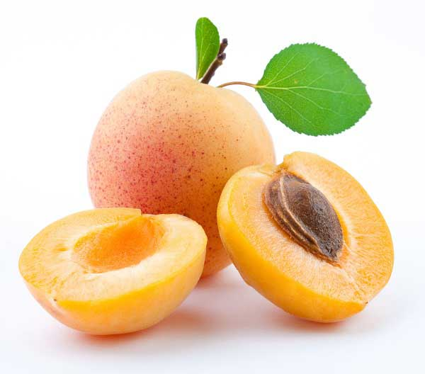 Can Dogs Eat Apricots? Are they Good or Bad for Dogs? | alldogsworld.com
