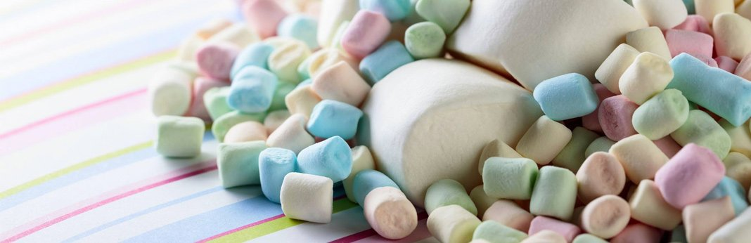 Can Dogs Eat Marshmallows? (Nutrition Guide)   My Pet Needs That