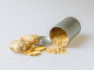 Can birds eat ginger? – Critter clean out