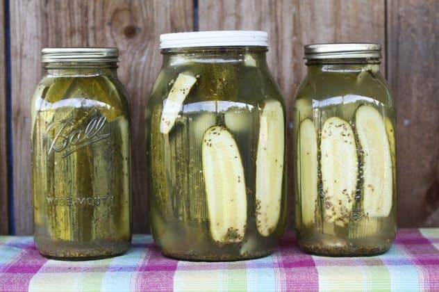 Home Canned Garlic Dill Pickle Recipe - Foodie With Family